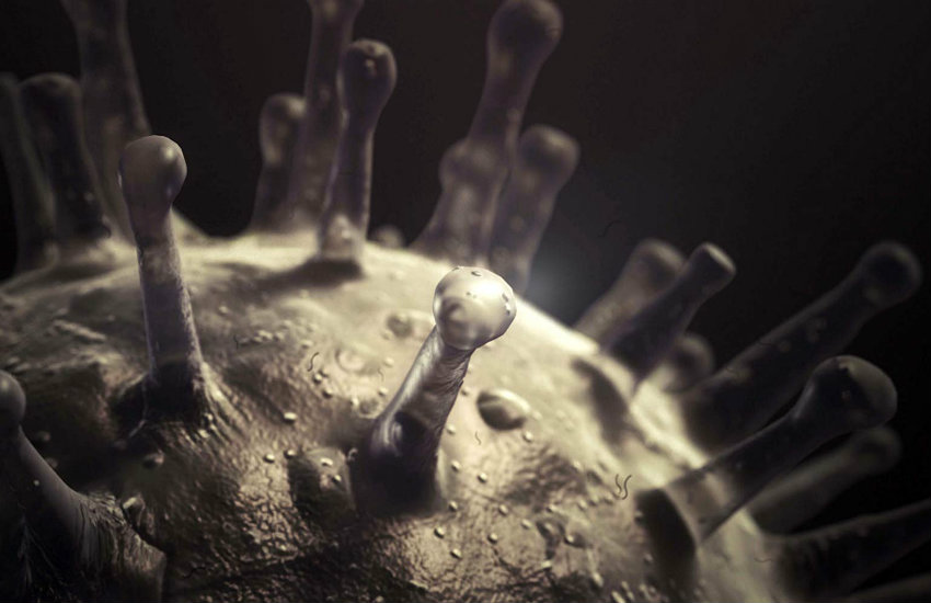 Recreación digital de la estructura de un virus | The Documentary Group