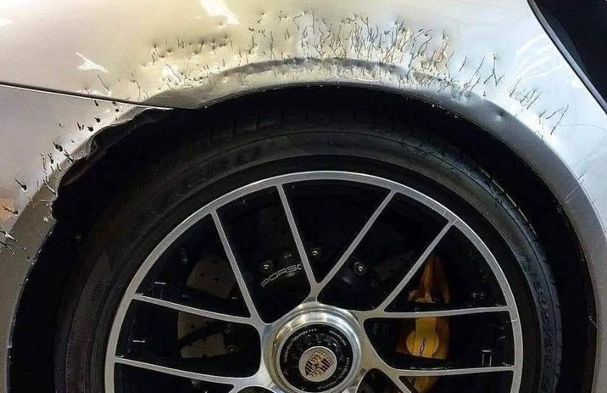 ¿Realmente el perro de Don Omar dejó así su Porsche de $250.000 dólares?... ¡Responde nuestro quiz de noticias!