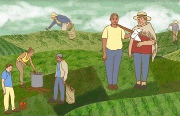 Los vecinos de Cajamarca se organizaron para proveerse entre ellos mismos los alimentos en temporada de pandemia. Ilustración: Rowena Neme.