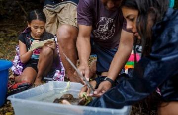 La Voz de Guanacaste, de Costa Rica, es uno de los medios de Latinoamérica que cuenta con una sección destinada a las soluciones. Aquí, una imagen de la historia de una comunidad que salvó a tortugas en peligro de extinción. Crédito: La Voz de Guanacaste.