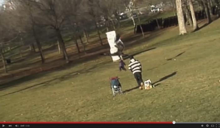 El falso video del águila robando a un bebé fue reproducido por centenares de medios