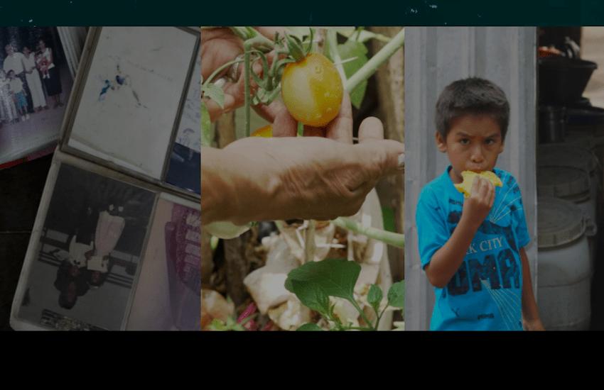 A lo largo de cinco capítulos, este especial multimedia expone el problema de la inseguridad alimentaria en El Salvador, pero también posibles soluciones.