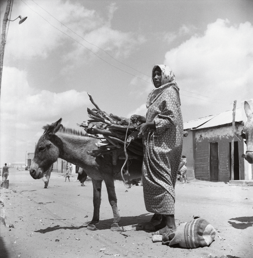 Nereo López. La Guajira, 1960.