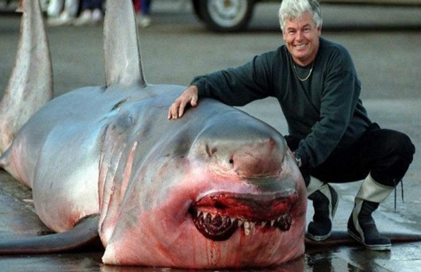 ¿En realidad fue capturado un tiburón de 1 tonelada en el Lago Michigan?... ¡Responde el quiz de noticias!