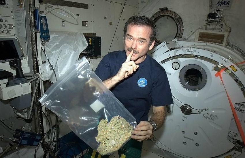 ¿Es cierto que el astronauta Chris Hadfield consumió marihuana en la Estación Espacial Internacional?.... ¡Responde nuestro quiz de noticias!